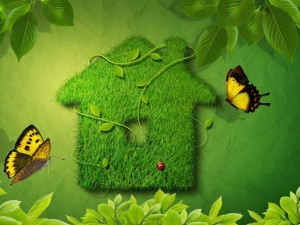 casa ecologica_1